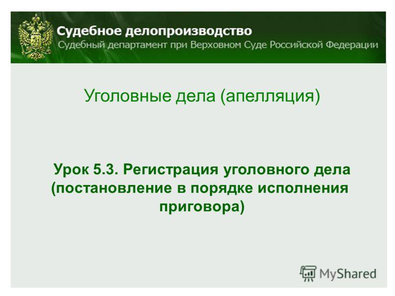 Уголовные дела (апелляция) Урок 5.3. Регистрация уголовного дела (постановление в порядке исполнения приговора)