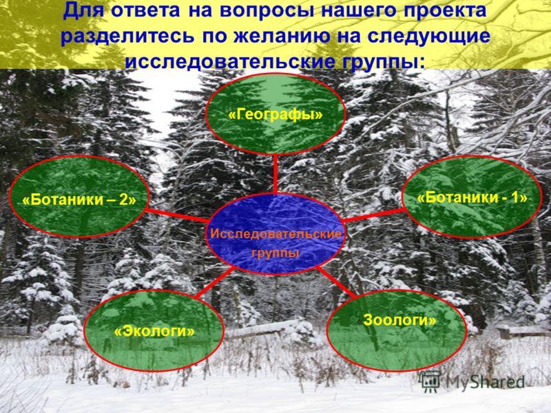 Для ответа на вопросы нашего проекта разделитесь по желанию на следующие исследовательские группы: Исследовательские группы «Географы» «Ботаники - 1» «Зоологи» «Экологи» «Ботаники – 2»