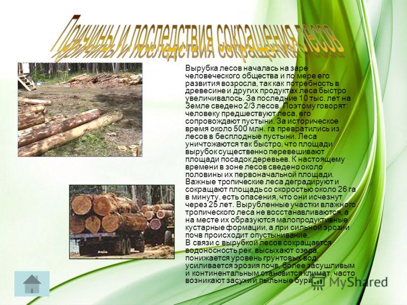 Вырубка лесов началась на заре человеческого общества и по мере его развития возросла, так как потребность в древесине и других продуктах леса быстро увеличивалось. За последние 10 тыс. лет на Земле сведено 2/3 лесов. Поэтому говорят: человеку предше