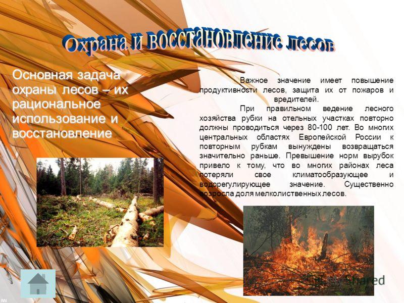 Основная задача охраны лесов – их рациональное использование и восстановление Важное значение имеет повышение продуктивности лесов, защита их от пожаров и вредителей. При правильном ведение лесного хозяйства рубки на отельных участках повторно должны