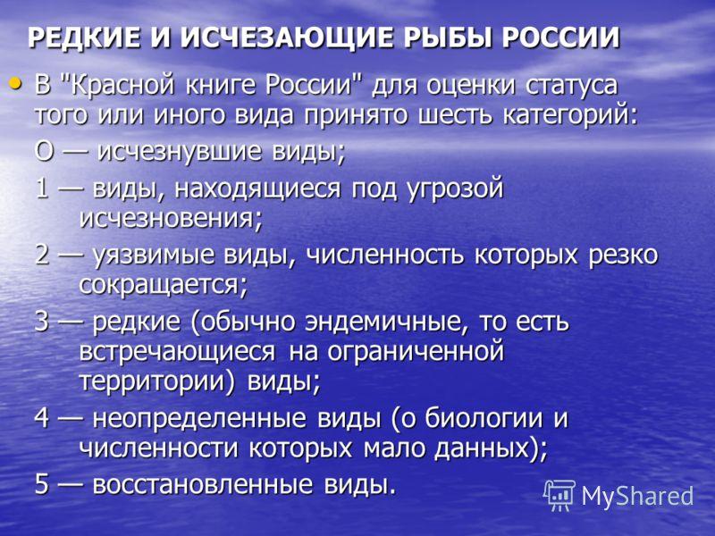 РЕДКИЕ И ИСЧЕЗАЮЩИЕ РЫБЫ РОССИИ В
