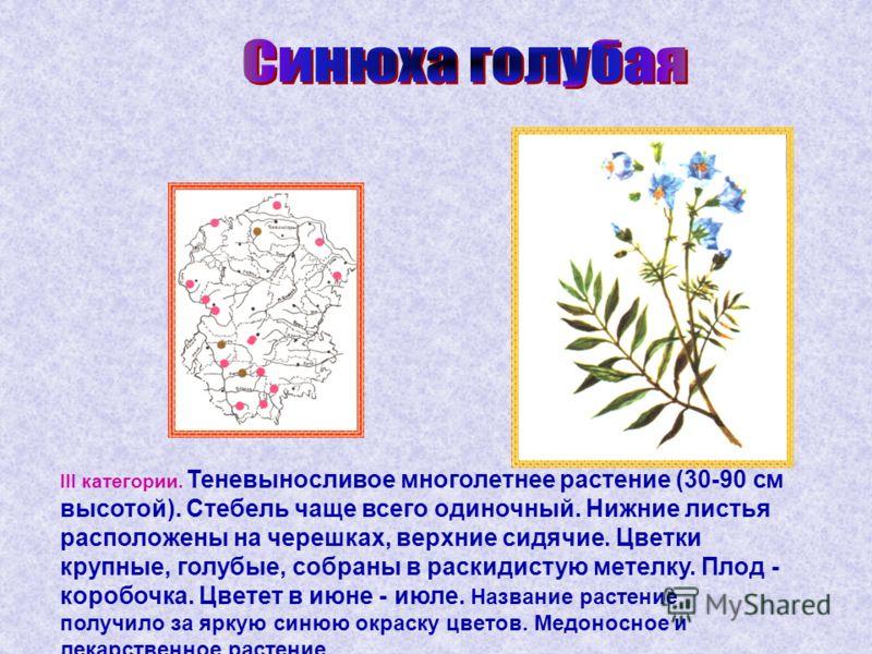 III категории. Теневыносливое многолетнее растение (30-90 см высотой). Стебель чаще всего одиночный. Нижние листья расположены на черешках, верхние сидячие. Цветки крупные, голубые, собраны в раскидистую метелку. Плод - коробочка. Цветет в июне - июл