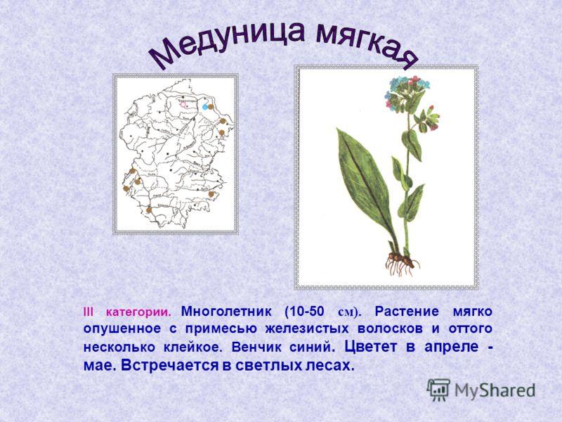 III категории. Многолетник (10-50 см). Растение мягко опушенное с примесью железистых волосков и оттого несколько клейкое. Венчик синий. Цветет в апреле - мае. Встречается в светлых лесах.