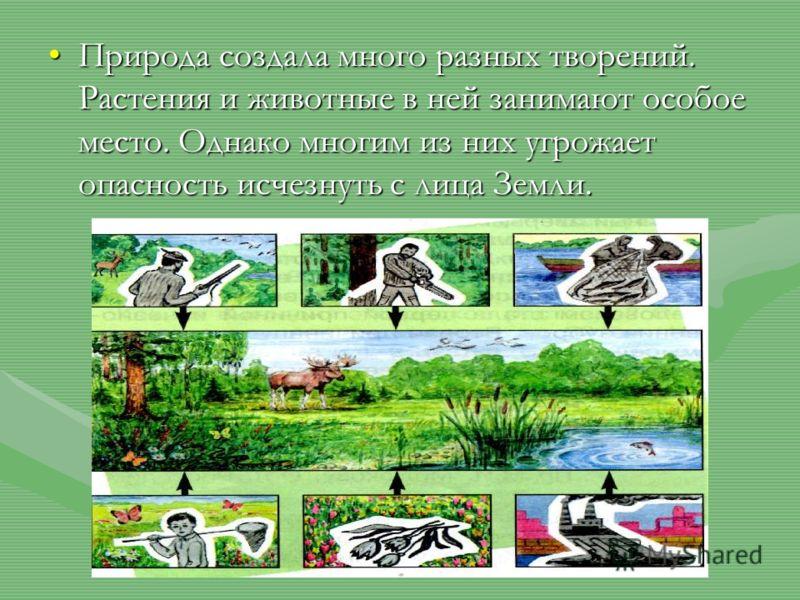 Природа создала много разных творений. Растения и животные в ней занимают особое место. Однако многим из них угрожает опасность исчезнуть с лица Земли.Природа создала много разных творений. Растения и животные в ней занимают особое место. Однако мног
