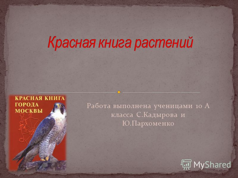 Работа выполнена ученицами 10 А класса С.Кадырова и Ю.Пархоменко