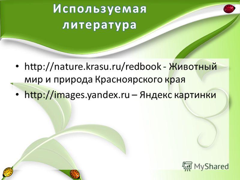 http://nature.krasu.ru/redbook - Животный мир и природа Красноярского края http://images.yandex.ru – Яндекс картинки