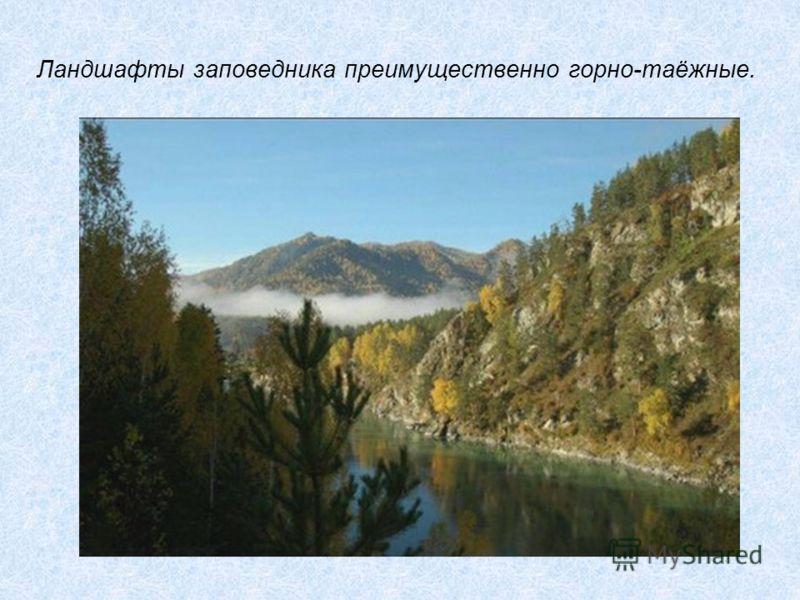 Ландшафты заповедника преимущественно горно-таёжные.