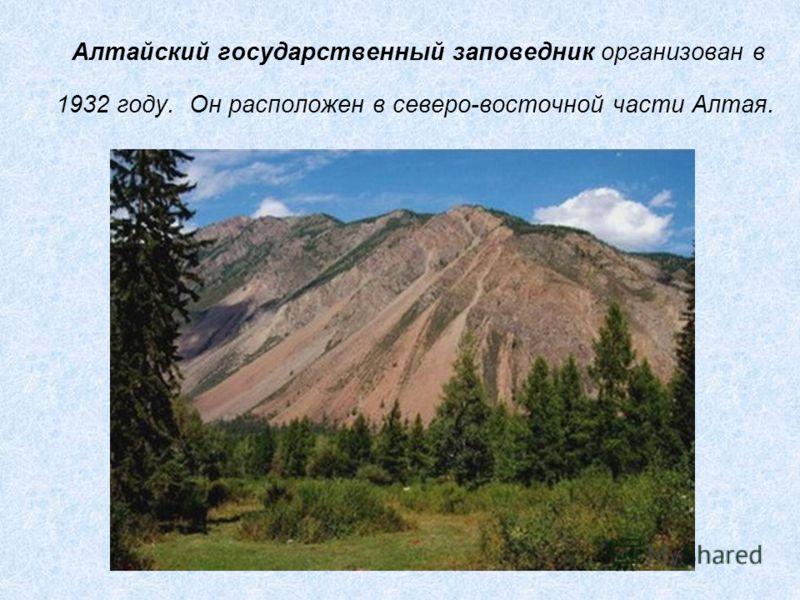 Алтайский государственный заповедник организован в 1932 году. Он расположен в северо-восточной части Алтая.