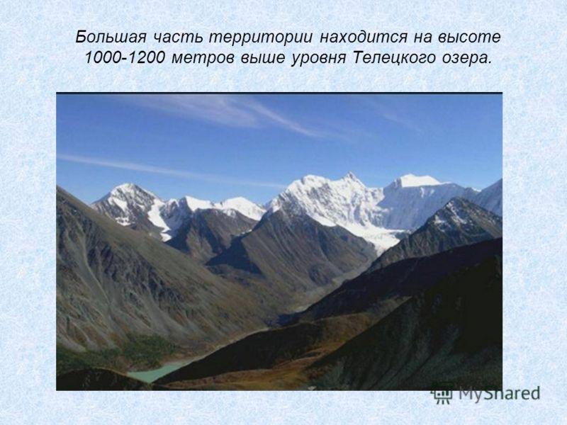 Большая часть территории находится на высоте 1000-1200 метров выше уровня Телецкого озера.