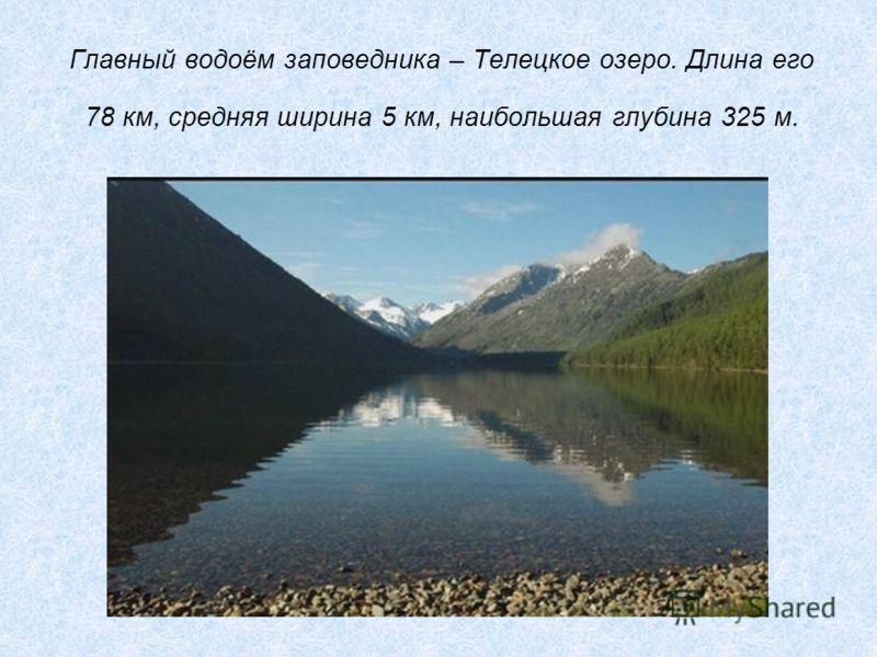 Главный водоём заповедника – Телецкое озеро. Длина его 78 км, средняя ширина 5 км, наибольшая глубина 325 м.