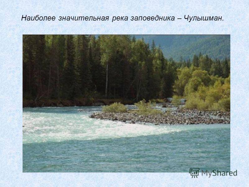 Наиболее значительная река заповедника – Чулышман.