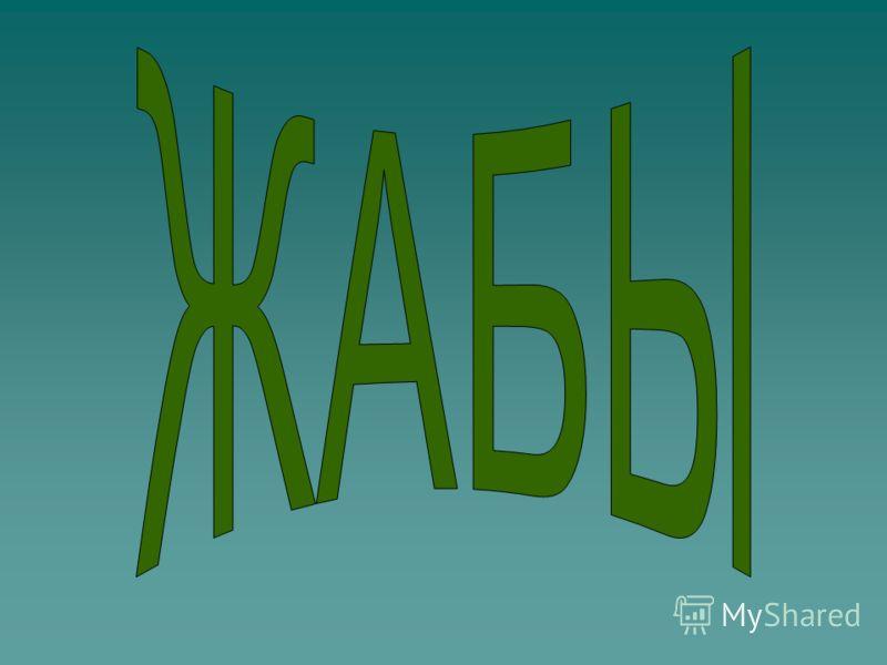 В России обитают 2 рода (3 вида) собственно чесночницы и крестовки. Многие ведут полуподземный образ жизни. Весной издает слабый чесночный запах (отсюда название). Чесночницы обитают в степях, на лугах, полях, в огородах, в смешанных и широколиственн