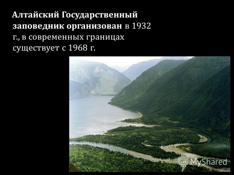 Алтайский Государственный заповедник организован в 1932 г., в современных границах существует с 1968 г.