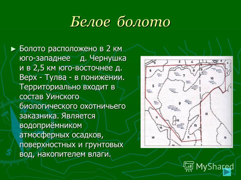 Белое болото Болото расположено в 2 км юго-западнее д. Чернушка и в 2,5 км юго-восточнее д. Верх - Тулва - в понижении. Территориально входит в состав Уинского биологического охотничьего заказника. Является водоприёмником атмосферных осадков, поверхн