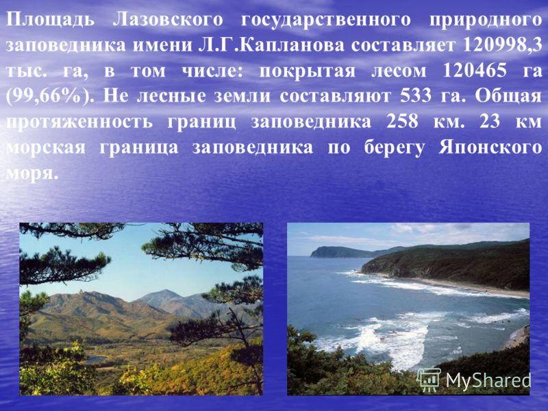 Площадь Лазовского государственного природного заповедника имени Л.Г.Капланова составляет 120998,3 тыс. га, в том числе: покрытая лесом 120465 га (99,66%). Не лесные земли составляют 533 га. Общая протяженность границ заповедника 258 км. 23 км морска