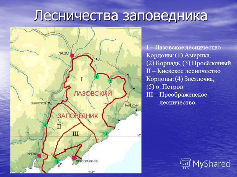 Лесничества заповедника I – Лазовское лесничество Кордоны: (1) Америка, (2) Корпадь, (3) Просёлочный II – Киевское лесничество Кордоны: (4) Звёздочка, (5) о. Петров III – Преображенское лесничество