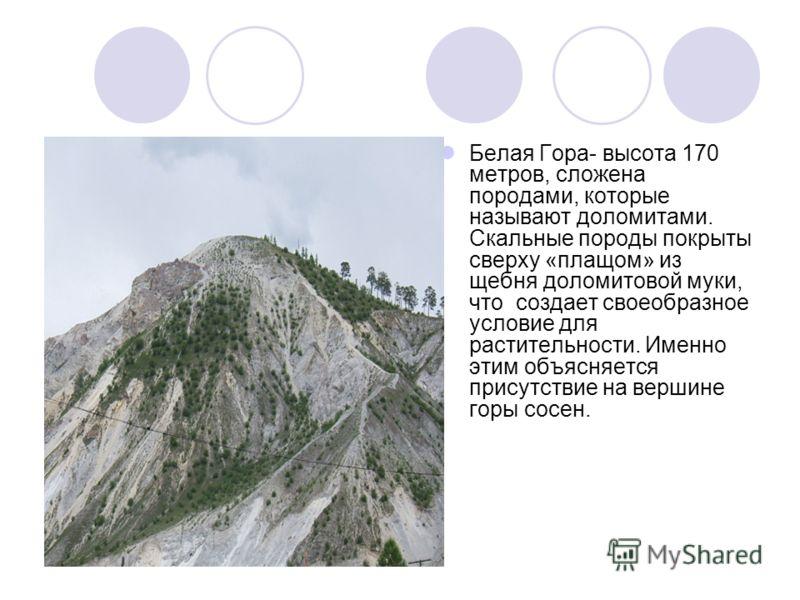 Белая Гора- высота 170 метров, сложена породами, которые называют доломитами. Скальные породы покрыты сверху «плащом» из щебня доломитовой муки, что создает своеобразное условие для растительности. Именно этим объясняется присутствие на вершине горы