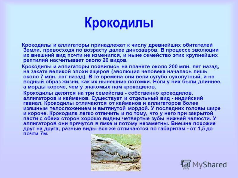 Крокодилы Крокодилы и аллигаторы принадлежат к числу древнейших обитателей Земли, превосходя по возрасту далее динозавров. В процессе эволюции их внешний вид почти не изменился, и ныне семейство этих крупнейших рептилий насчитывает около 20 видов. Кр
