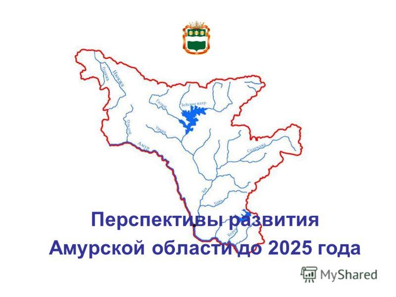 Перспективы развития Амурской области до 2025 года