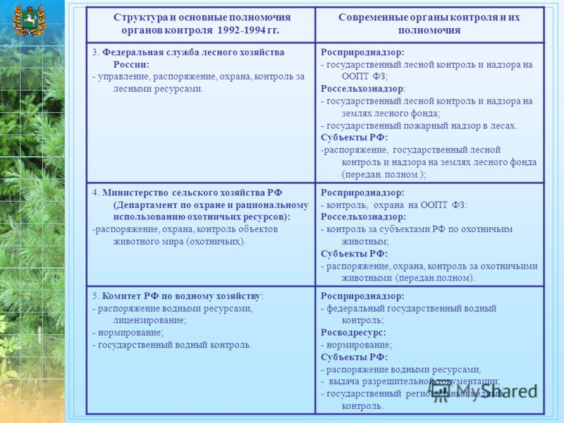 Структура и основные полномочия органов контроля 1992-1994 гг. Современные органы контроля и их полномочия 3. Федеральная служба лесного хозяйства России: - управление, распоряжение, охрана, контроль за лесными ресурсами. Росприроднадзор: - государст