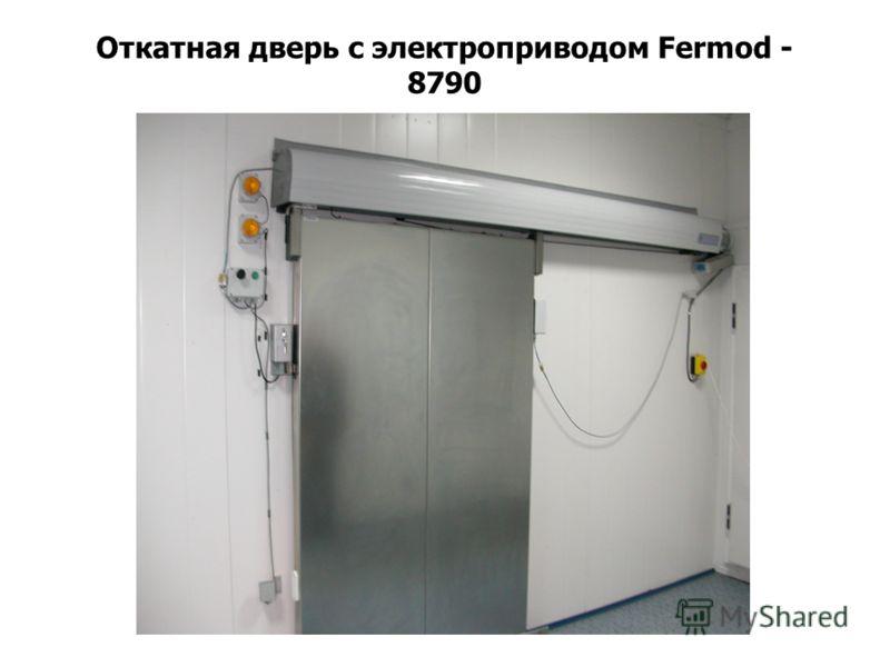 Откатная дверь с электроприводом Fermod - 8790