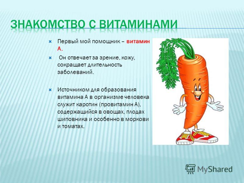 Первый мой помощник – витамин А. Он отвечает за зрение, кожу, сокращает длительность заболеваний. Источником для образования витамина А в организме человека служит каротин (провитамин А), содержащийся в овощах, плодах шиповника и особенно в моркови и
