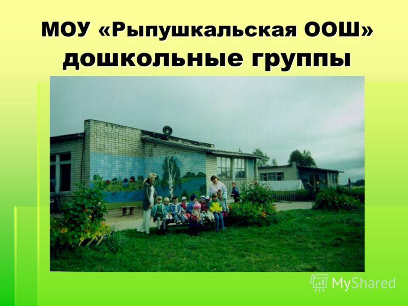 МОУ «Рыпушкальская ООШ» дошкольные группы
