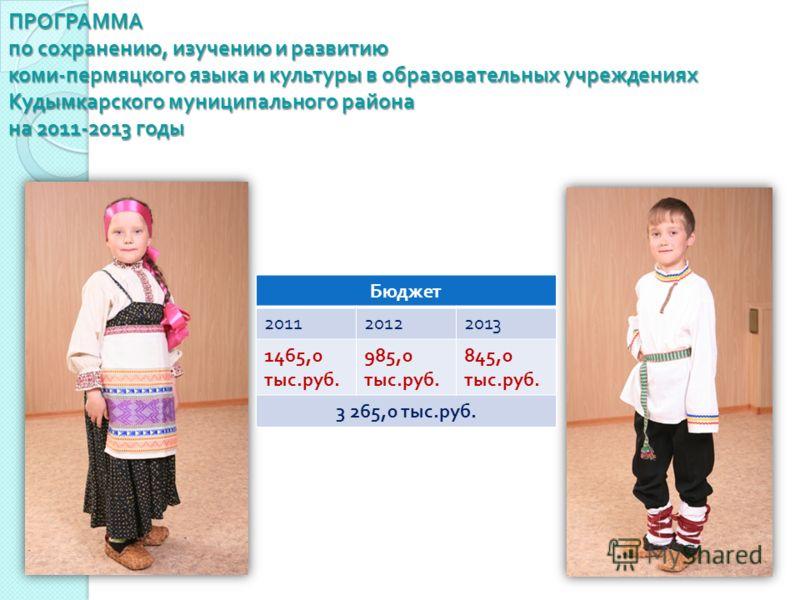 ПРОГРАММА по сохранению, изучению и развитию коми - пермяцкого языка и культуры в образовательных учреждениях Кудымкарского муниципального района на 2011-2013 годы Бюджет 201120122013 1465,0 тыс. руб. 985,0 тыс. руб. 845,0 тыс. руб. 3 265,0 тыс. руб.