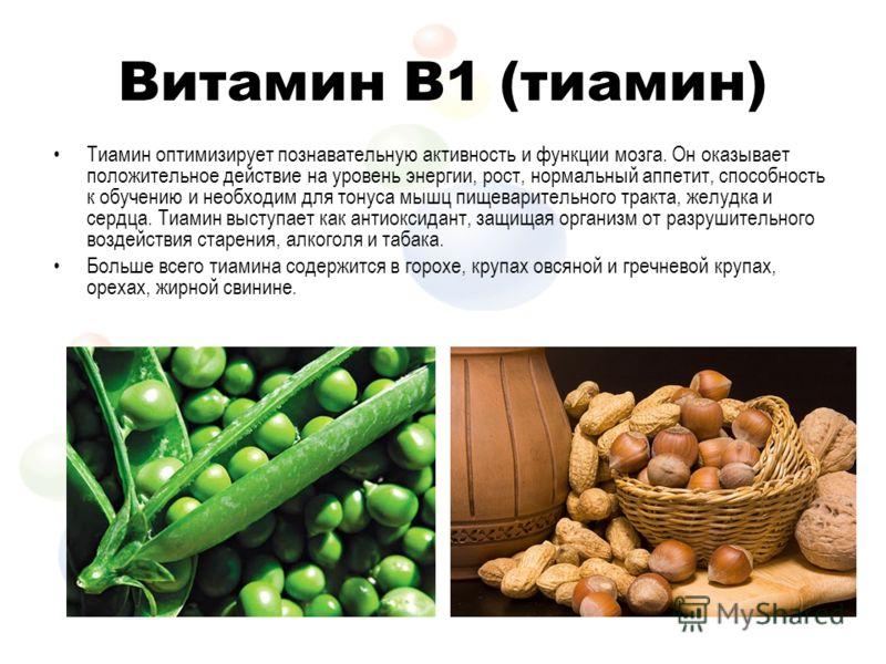 Витамин B1 (тиамин) Тиамин оптимизирует познавательную активность и функции мозга. Он оказывает положительное действие на уровень энергии, рост, нормальный аппетит, способность к обучению и необходим для тонуса мышц пищеварительного тракта, желудка и