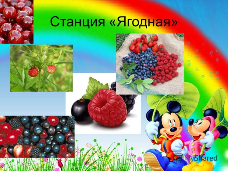 Угадай это овощ или фрукт ?