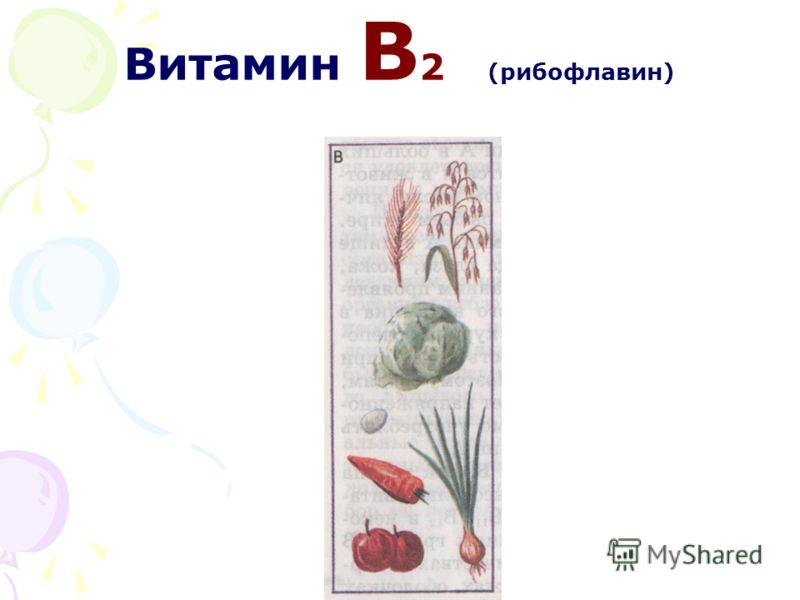 Витамин В 2 (рибофлавин)