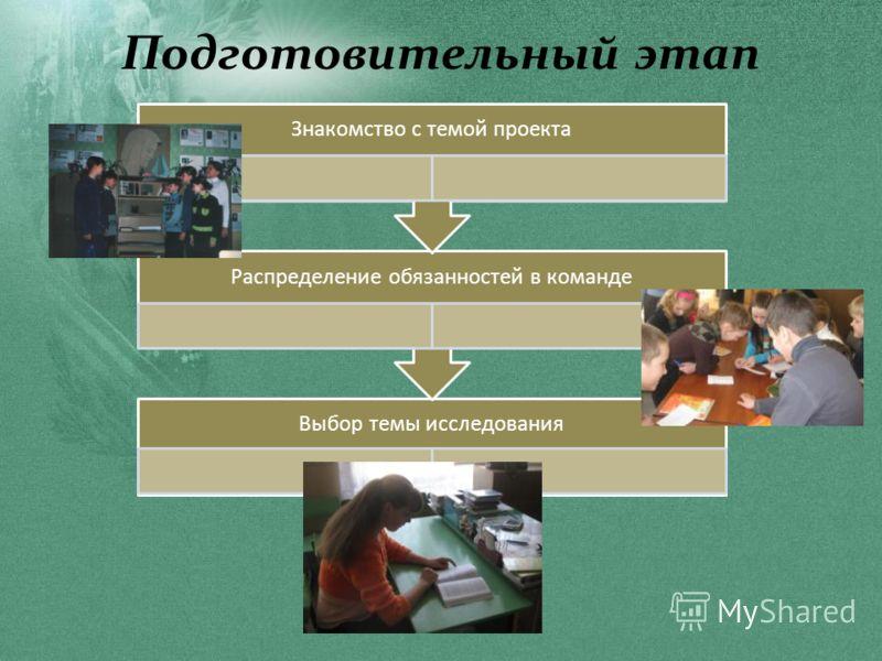 Подготовительный этап Выбор темы исследования Распределение обязанностей в команде Знакомство с темой проекта