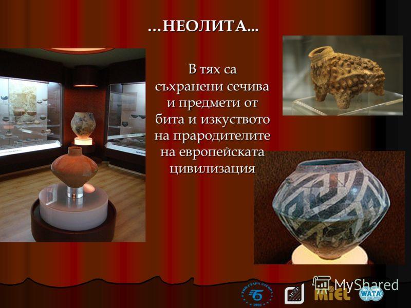…НЕОЛИТА... В тях са съхранени сечива и предмети от бита и изкуството на прародителите на европейската цивилизация