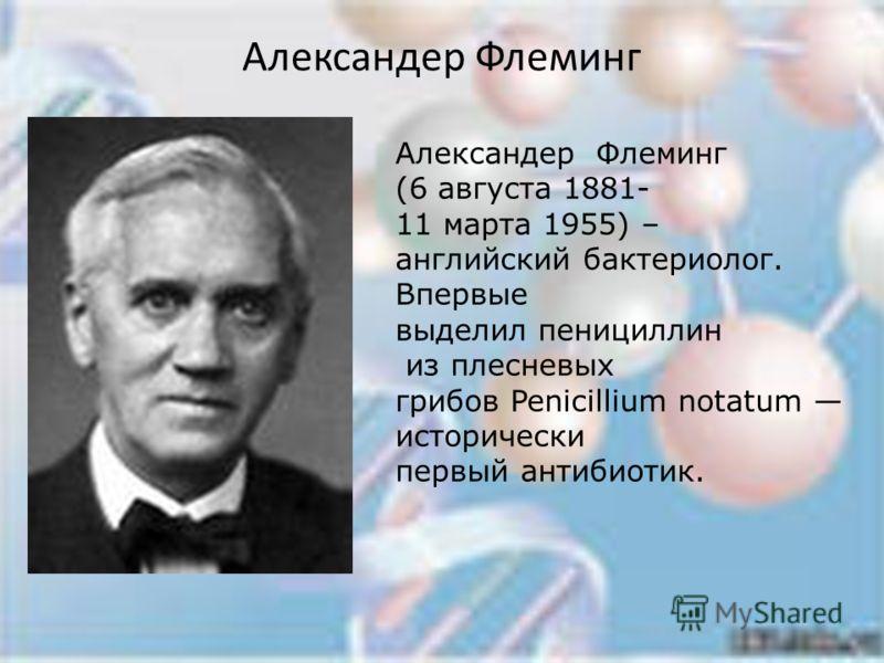 Александер Флеминг Александер Флеминг (6 августа 1881- 11 марта 1955) – английский бактериолог. Впервые выделил пенициллин из плесневых грибов Penicillium notatum исторически первый антибиотик.