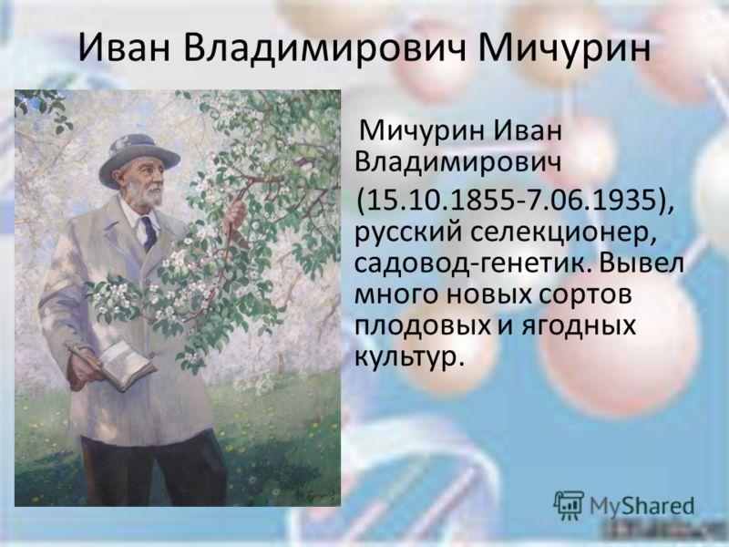 Иван Владимирович Мичурин Мичурин Иван Владимирович (15.10.1855-7.06.1935), русский селекционер, садовод-генетик. Вывел много новых сортов плодовых и ягодных культур.