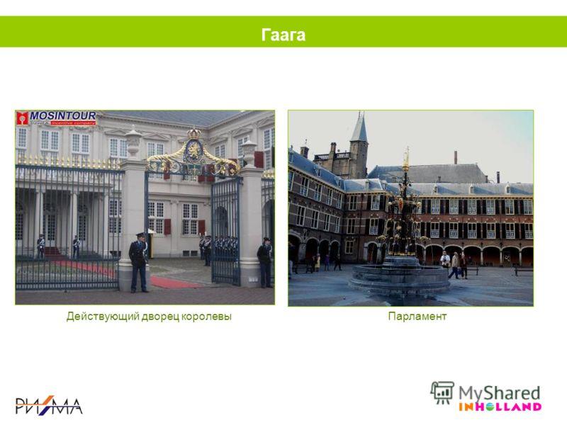 Гаага Действующий дворец королевыПарламент