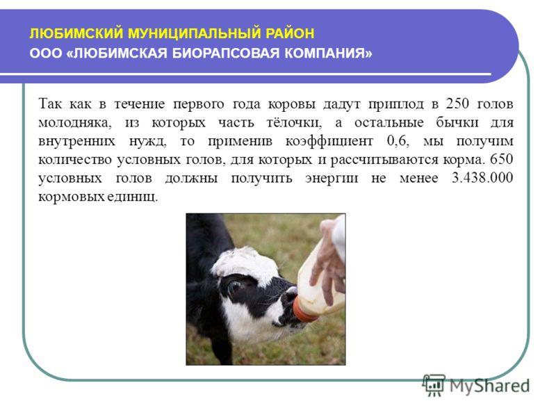 ЛЮБИМСКИЙ МУНИЦИПАЛЬНЫЙ РАЙОН ООО «ЛЮБИМСКАЯ БИОРАПСОВАЯ КОМПАНИЯ» Так как в течение первого года коровы дадут приплод в 250 голов молодняка, из которых часть тёлочки, а остальные бычки для внутренних нужд, то применив коэффициент 0,6, мы получим кол