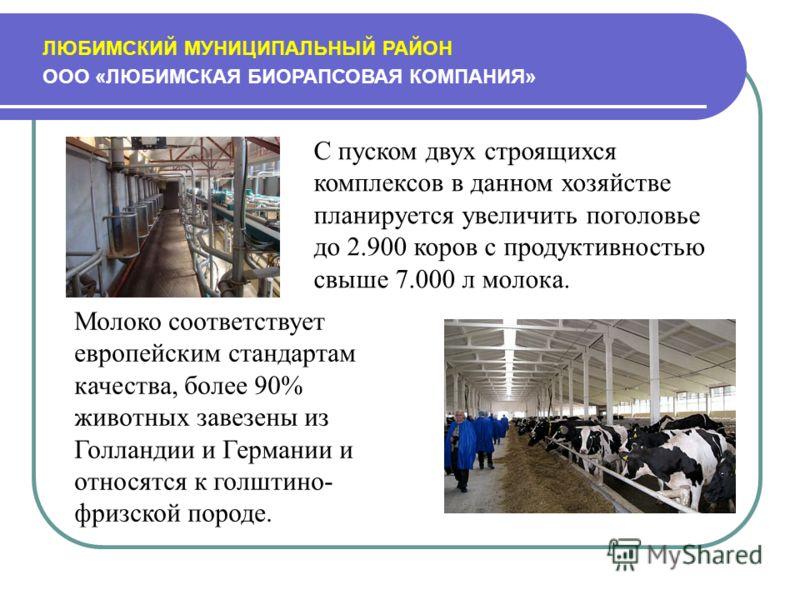 ЛЮБИМСКИЙ МУНИЦИПАЛЬНЫЙ РАЙОН ООО «ЛЮБИМСКАЯ БИОРАПСОВАЯ КОМПАНИЯ» С пуском двух строящихся комплексов в данном хозяйстве планируется увеличить поголовье до 2.900 коров с продуктивностью свыше 7.000 л молока. Молоко соответствует европейским стандарт