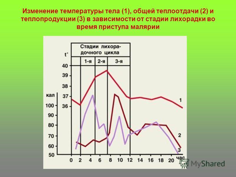 Изменение температуры тела (1), общей теплоотдачи (2) и теплопродукции (3) в зависимости от стадии лихорадки во время приступа малярии