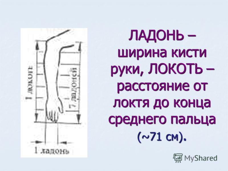 ЛАДОНЬ – ширина кисти руки, ЛОКОТЬ – расстояние от локтя до конца среднего пальца (~71 см).