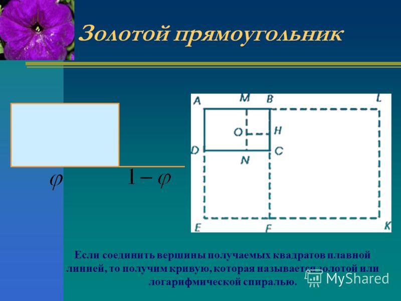 Золотой прямоугольник Если соединить вершины получаемых квадратов плавной линией, то получим кривую, которая называется золотой или логарифмической спиралью.