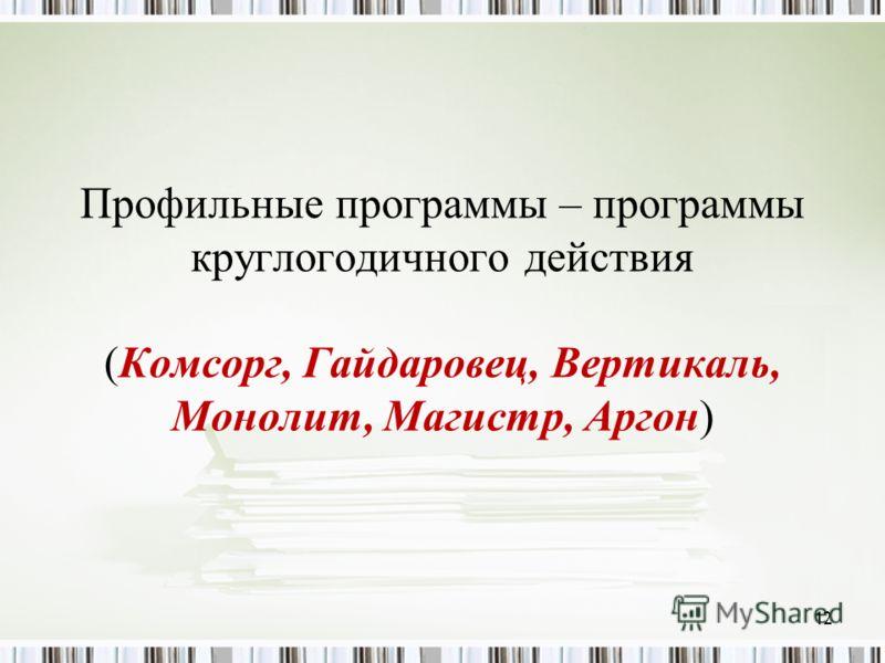 Профильные программы – программы круглогодичного действия (Комсорг, Гайдаровец, Вертикаль, Монолит, Магистр, Аргон) 12