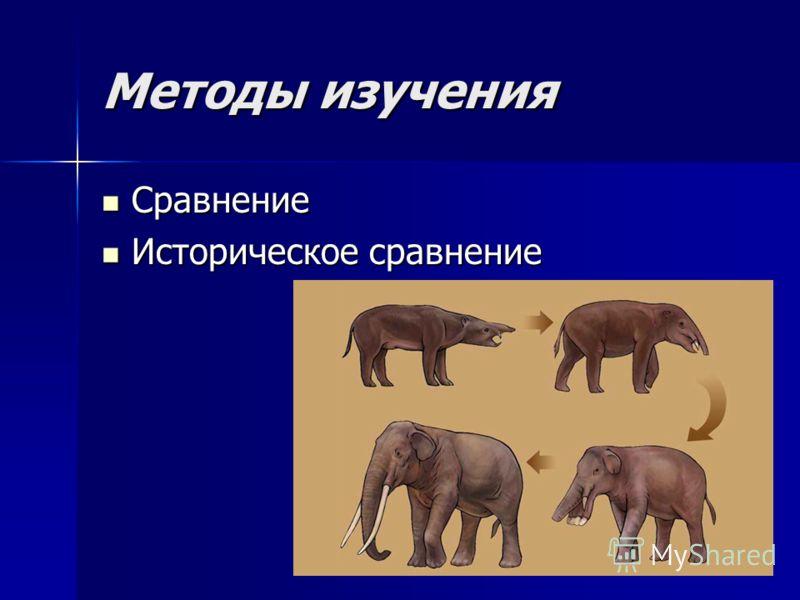 Методы изучения Сравнение Сравнение Историческое сравнение Историческое сравнение
