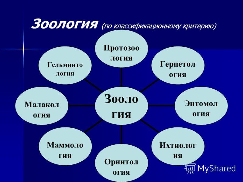 Зоология (по классификационному критерию) Зоология Протозоология ГерпетологияЭнтомологияИхтиологияОрнитологияМаммологияМалакологияГельминтология