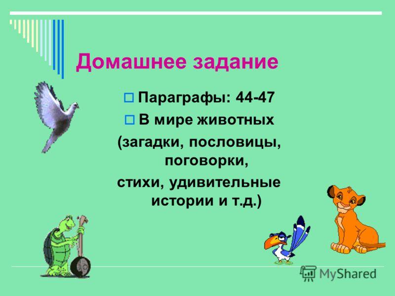 Домашнее задание Параграфы: 44-47 В мире животных (загадки, пословицы, поговорки, стихи, удивительные истории и т.д.)