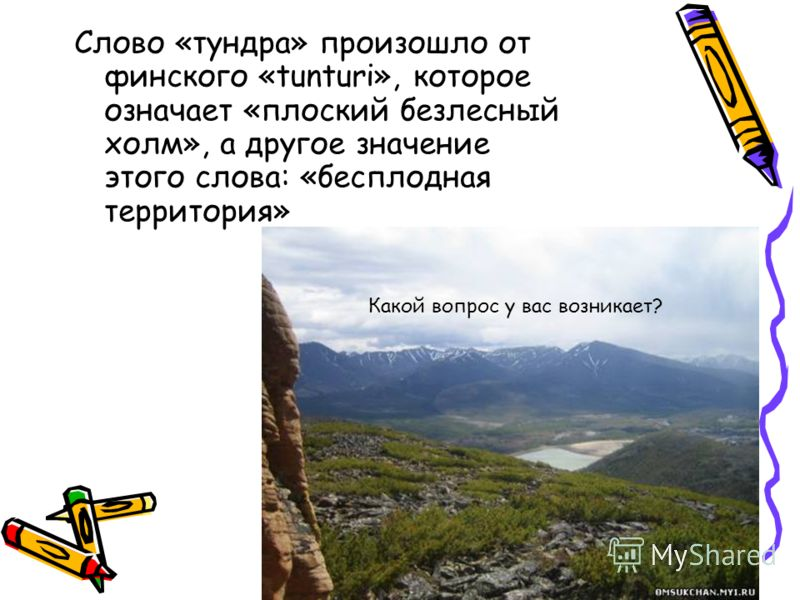 Слово «тундра» произошло от финского «tunturi», которое означает «плоский безлесный холм», а другое значение этого слова: «бесплодная территория» Какой вопрос у вас возникает?