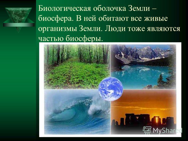 Биологическая оболочка Земли – биосфера. В ней обитают все живые организмы Земли. Люди тоже являются частью биосферы.