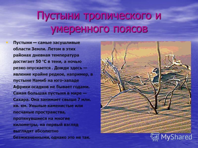 Пустыни тропического и умеренного поясов Пустыни самые засушливые области Земли. Летом в этих районах дневная температура достигает 50 °С в тени, а ночью резко опускается. Дожди здесь явление крайне редкое, например, в пустыне Намиб на юго-западе Афр