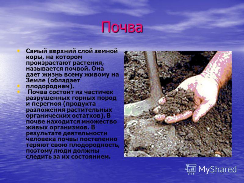 Почва Самый верхний слой земной коры, на котором произрастают растения, называется почвой. Она дает жизнь всему живому на Земле (обладает плодородием). Почва состоит из частичек разрушенных горных пород и перегноя (продукта разложения растительных ор