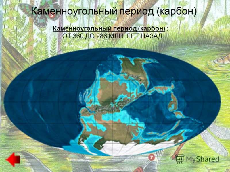 Животный и растительный мир Быстрая эволюция рыб, включая акул и скатов, кистеперых и лучеперых рыб. Увеличилось число аммонитов. В морях охотились гигантские эвриптериды длиной до 2 м. В позднем девоне многие группы древних рыб, а также кораллов, пл